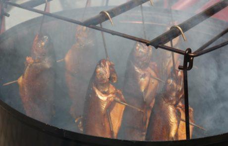 Geräucherte Forellen Smoker